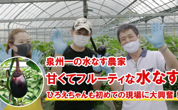 水なす栽培で刺身の食べ方