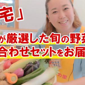 農家が厳選した旬の野菜の詰め合わせセットをお届けする食宅が人気