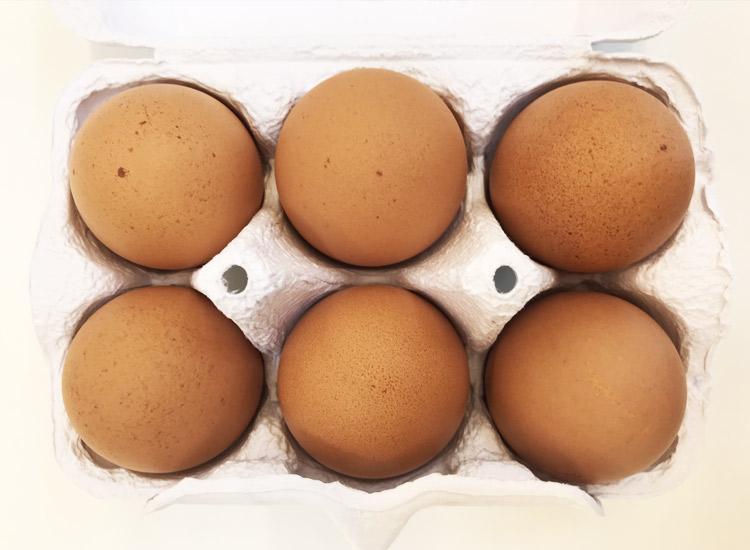 頑固の卵6個入りパック