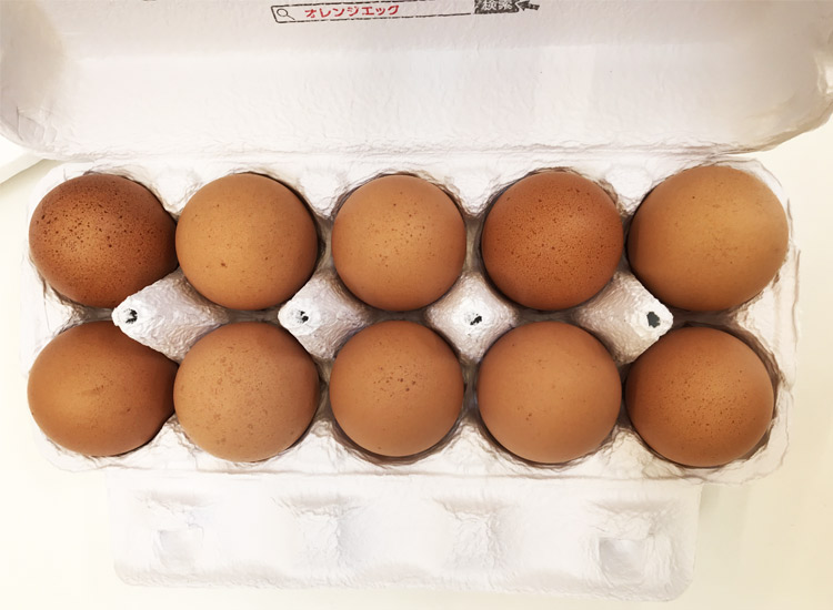 頑固の卵10個入りパック